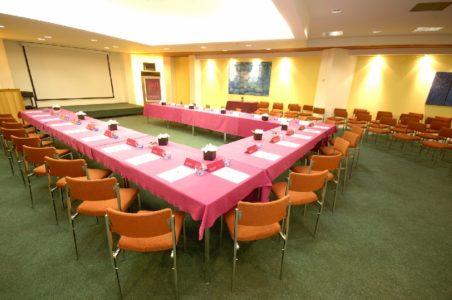 HÔTEL MERCURE (salle)