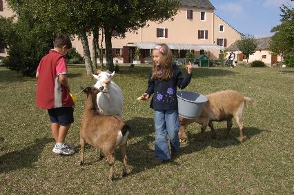 Les enfants à la mini-ferme