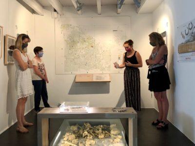 """Visite flash de l'exposition """"Roquemissou - Plongée dans la Préhistoire du Causse"""""""