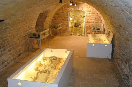 L'espace archéologique départemental