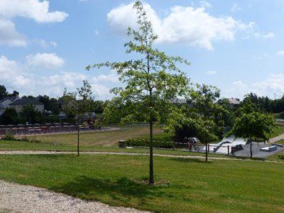 Complexe sportif - La Plaine des Sports